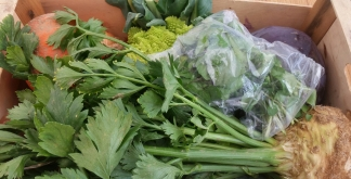 half-price-veg-box